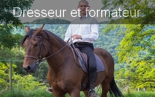 equitation adaptee